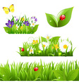 Flowers With Grass Butterfly And Ladybug vector image