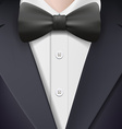 tuxedo with a bow tie vector image
