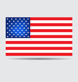 American Flag vector image