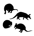 Armadillo set vector image