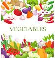 vegetable and healthy food menu poster fresh vector image