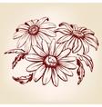 daisy hand drawn llustration sketch vector image