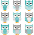 Aqua Grey Cute Owl Collections vector image vector image