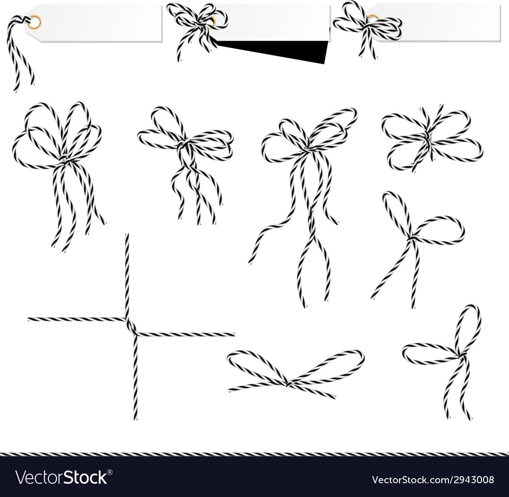 Collection of ribbons ahd bows in twine style vector