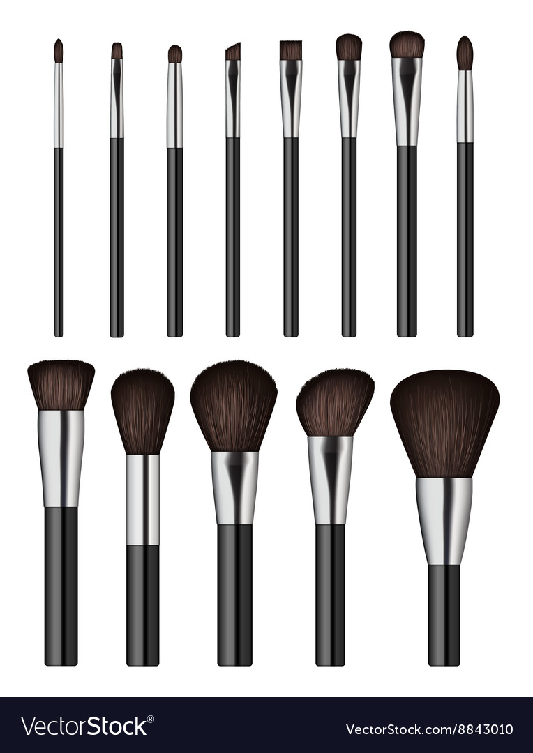 Makeup brush isolated on white background vector