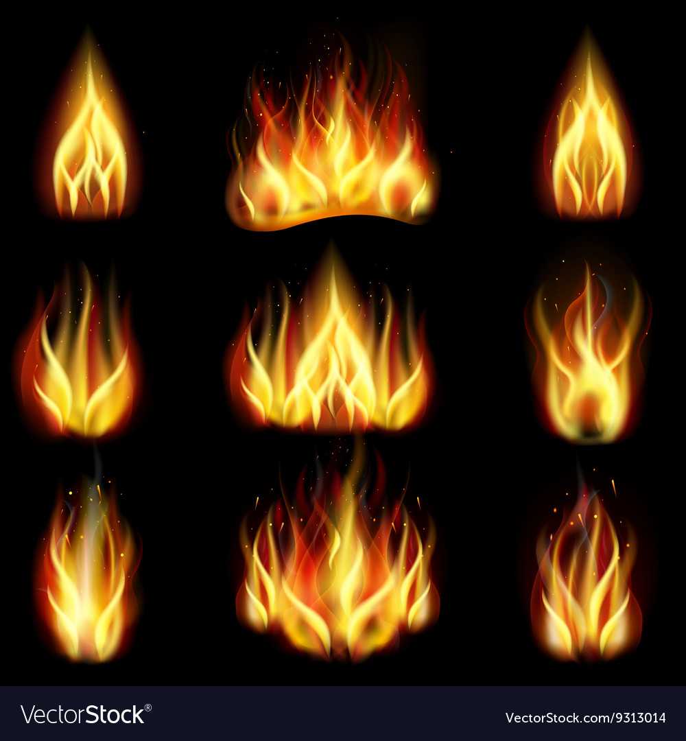 Fire on black background vector