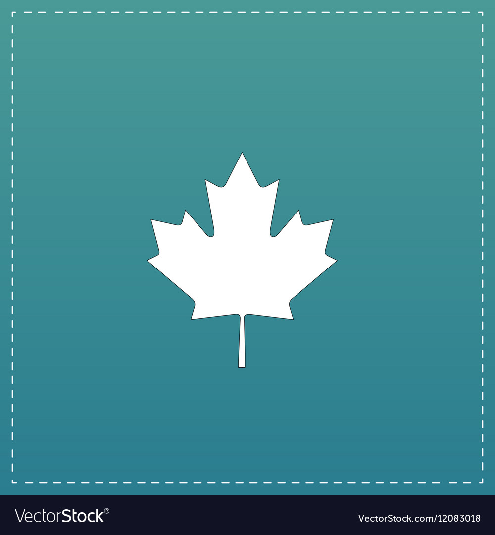 Maple leaf flat icon vector