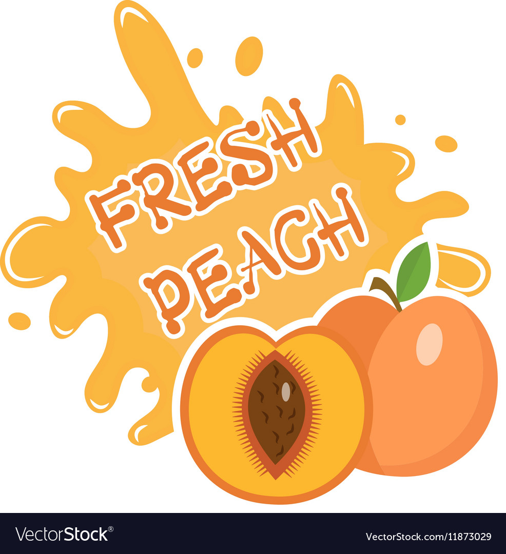 Fresh peach splash icon logo sticker fruit vector