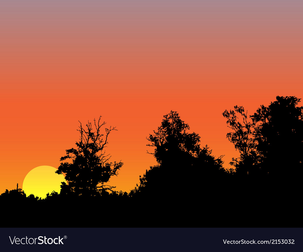 Bright sunrise vector