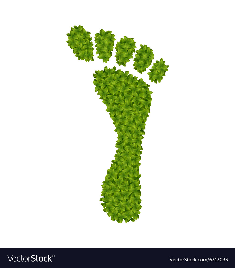 Human footprint made in green leaves vector