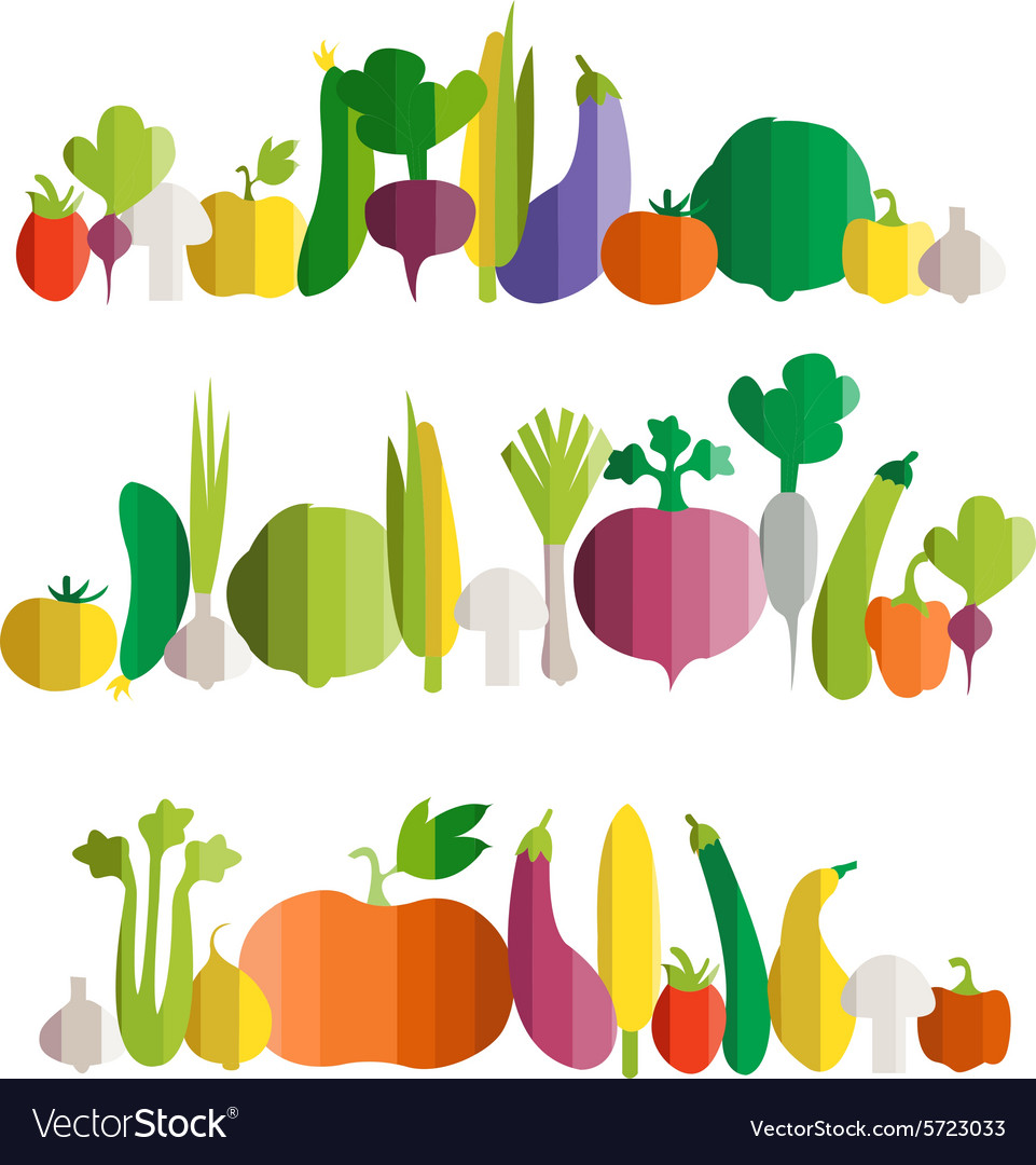 Vegetables in modern flat design style vector