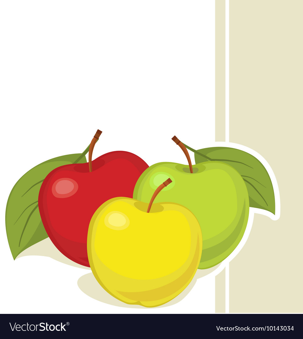 Still life of three colourful apples vector