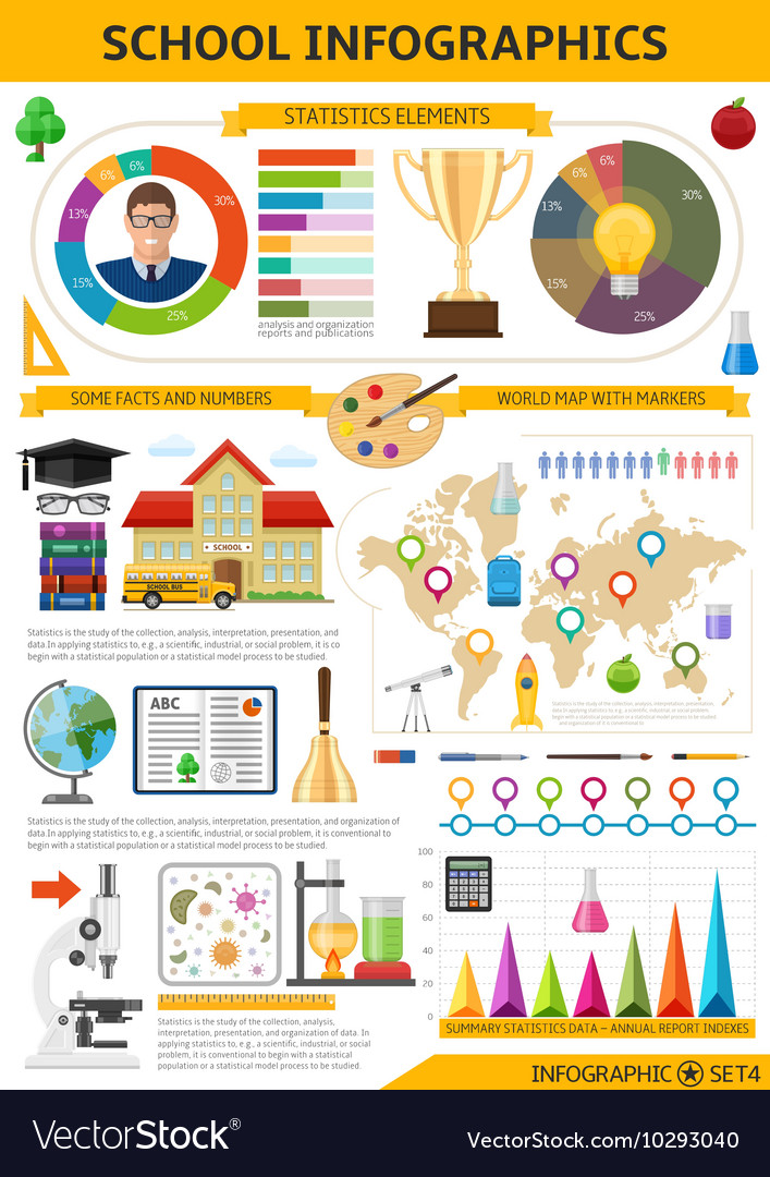 School infographics template vector