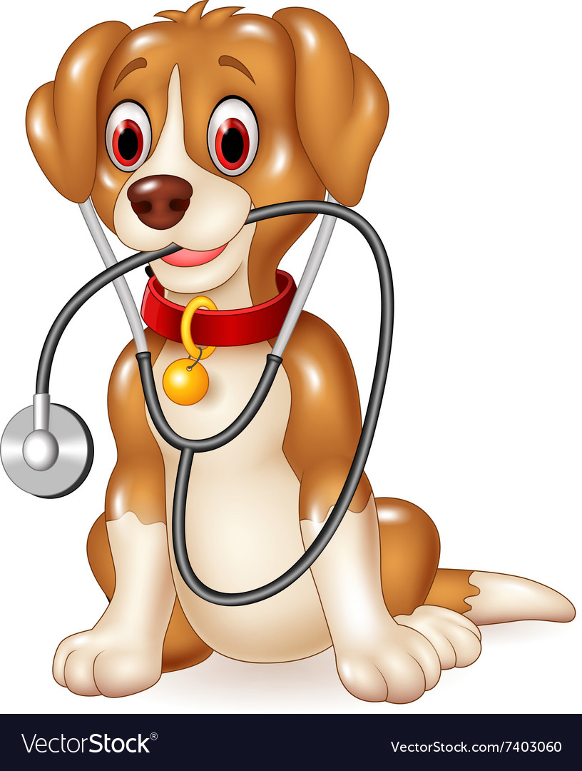 Cartoon funny dog sitting with stethoscope vector
