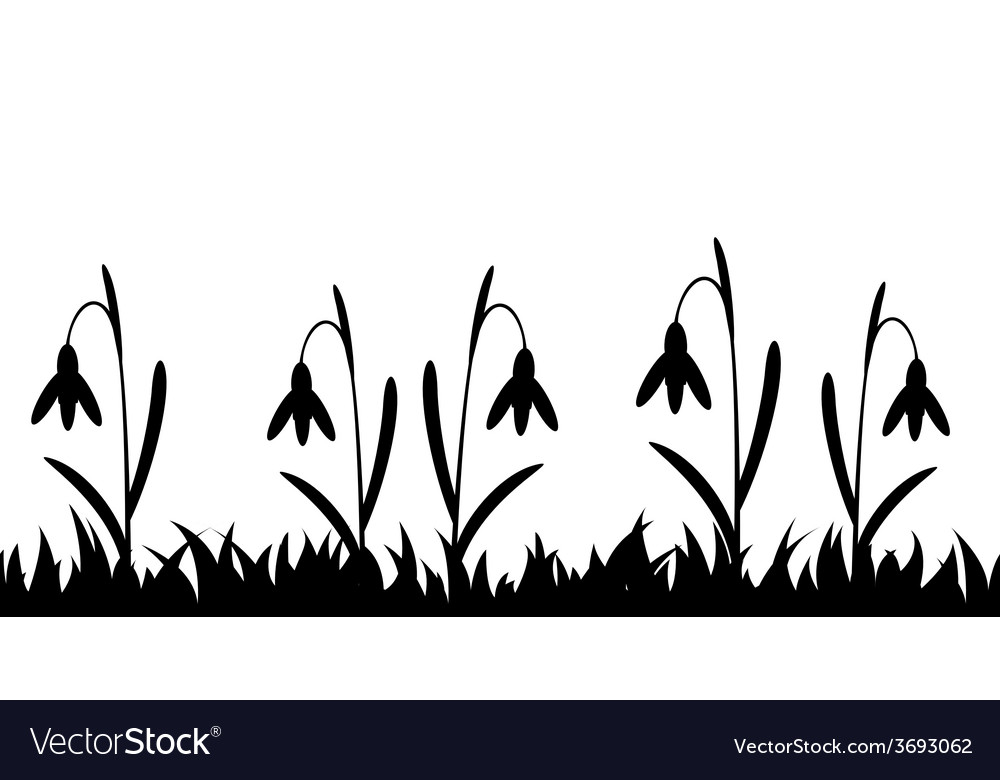 Seamless silhouette grass and flowers vector