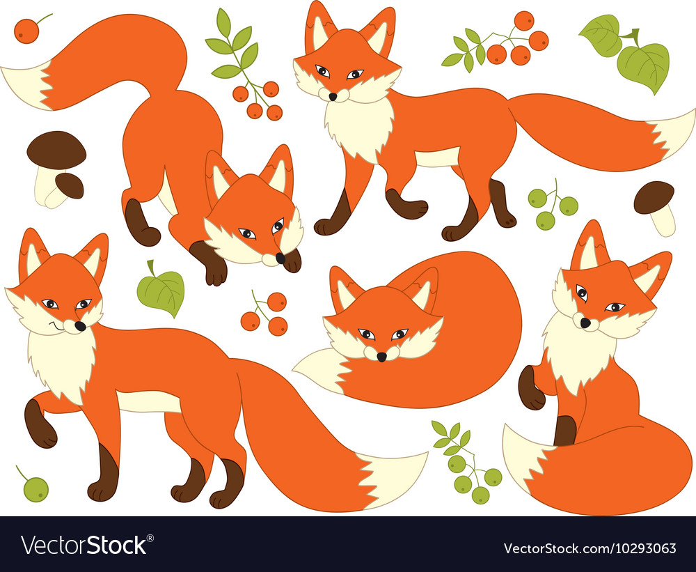 Foxes set vector