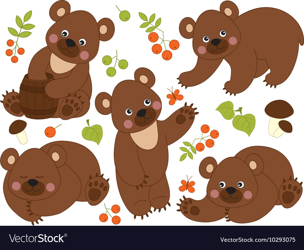 Bears set vector