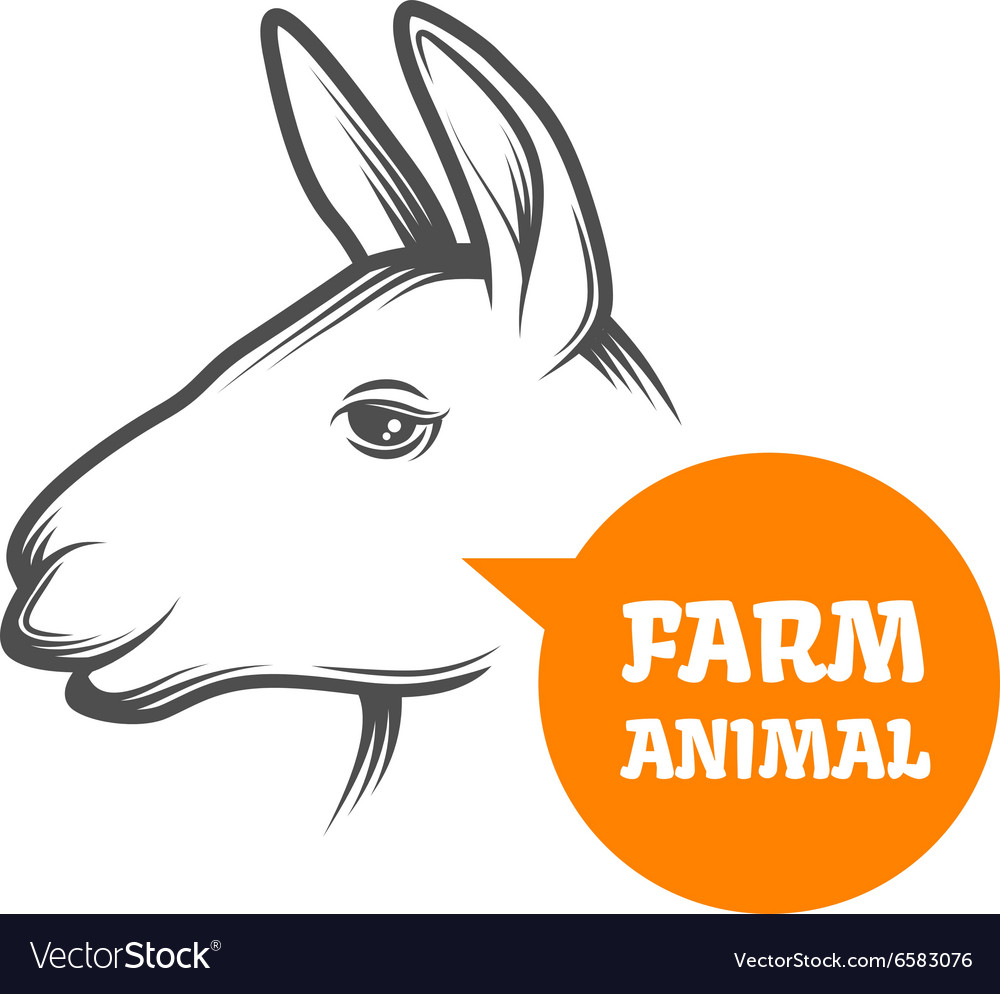 Alpaca farm vector