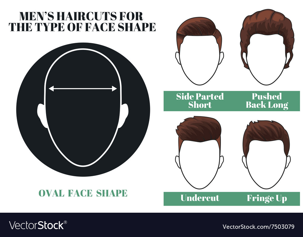 Oval face shape vector