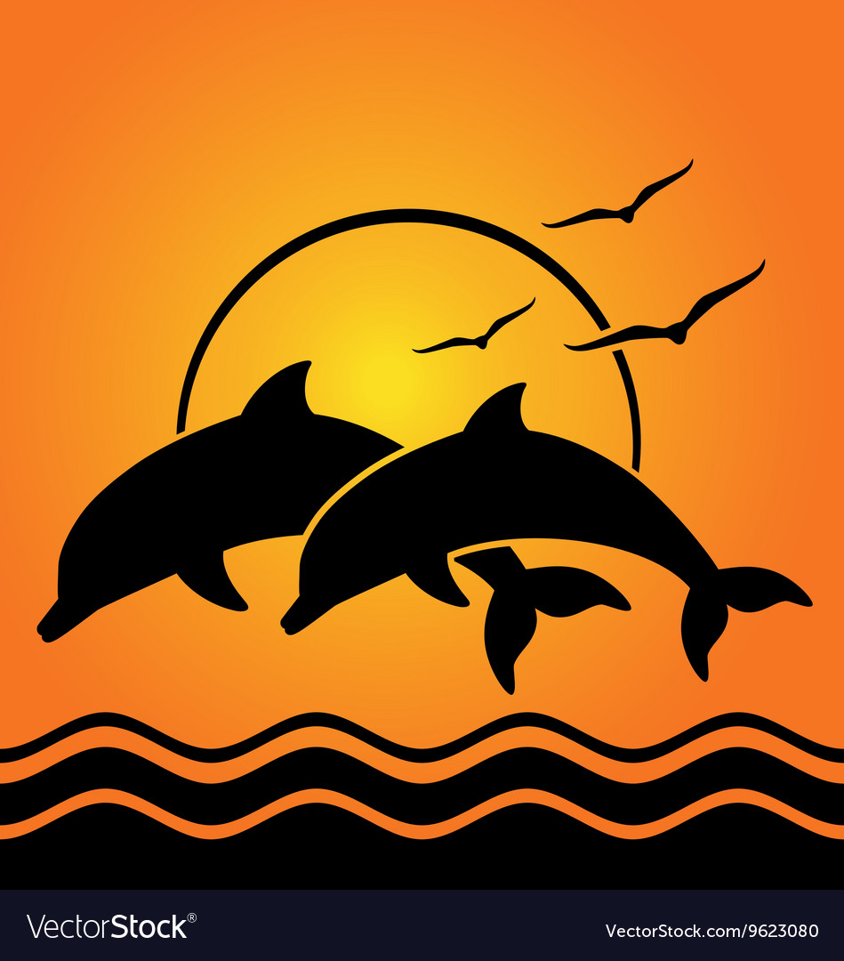 Dolphin silhouettes on sunset background vector