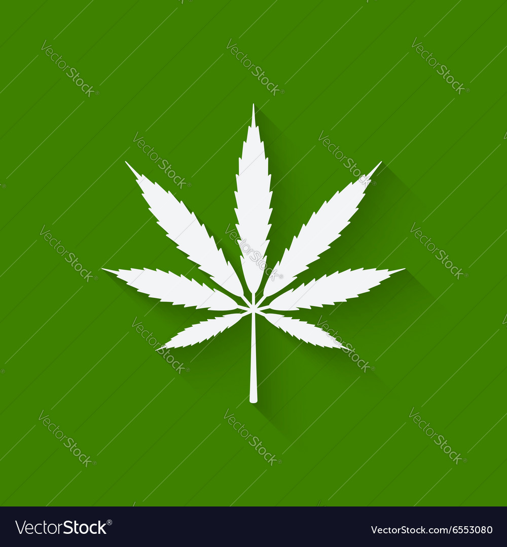 Marijuana leaf on green background vector