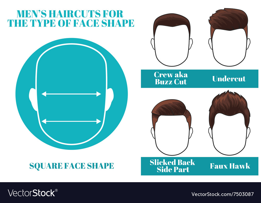 Square face shape vector