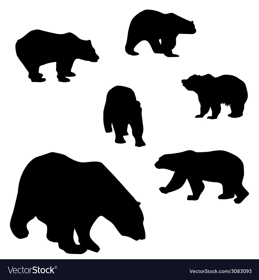 Sweet and beautiful bears vector