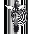 Zebra barcode Face and neck vector image