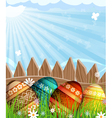 Easter eggs near a wooden fence in the meadow vector image