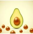 Half an avocado vector image