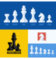Flat set of chess pieces icons vector image