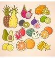 Exotic fruits set vector image