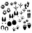 collection of animals birds and man trace vector image