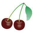 Cherry 1 v vector image