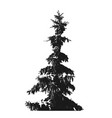 black fur-tree silhouette isolated on white vector image