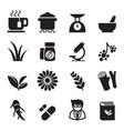 herb icon set vector image