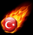 Round glossy icon of turkey vector image
