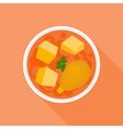 Massaman or red curry vector image