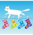 white cat on a clothes line vector image