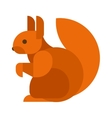 squirrel isolated vector image