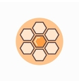 Honeycomb flat concept icon vector image