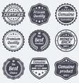 Set of retro badges and labels vector image