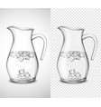 glass jug with water and ice vector image