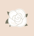 Beautiful vintage rose isolated on pale background vector image
