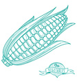 Outline hand drawn sketch of corncob flat style vector image