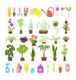 window gardening infographic elements vector image