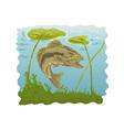 largemouth bass jumping vector image