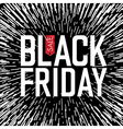 Black Friday Typography Rays background vector image vector image