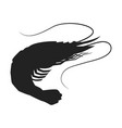 shrimp icon shrimp silhouette isolated vector image