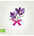 Flowers with bow isolated vector image vector image